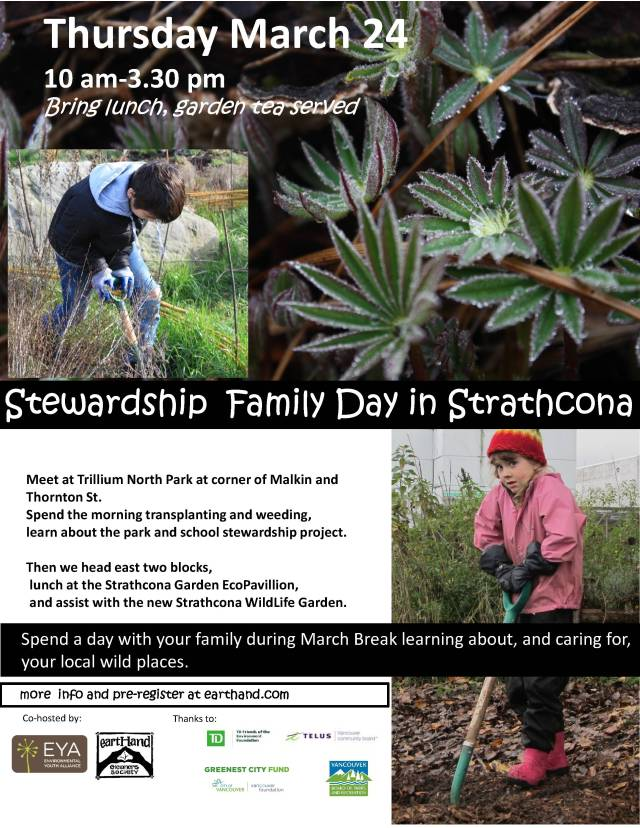 family stewardship day