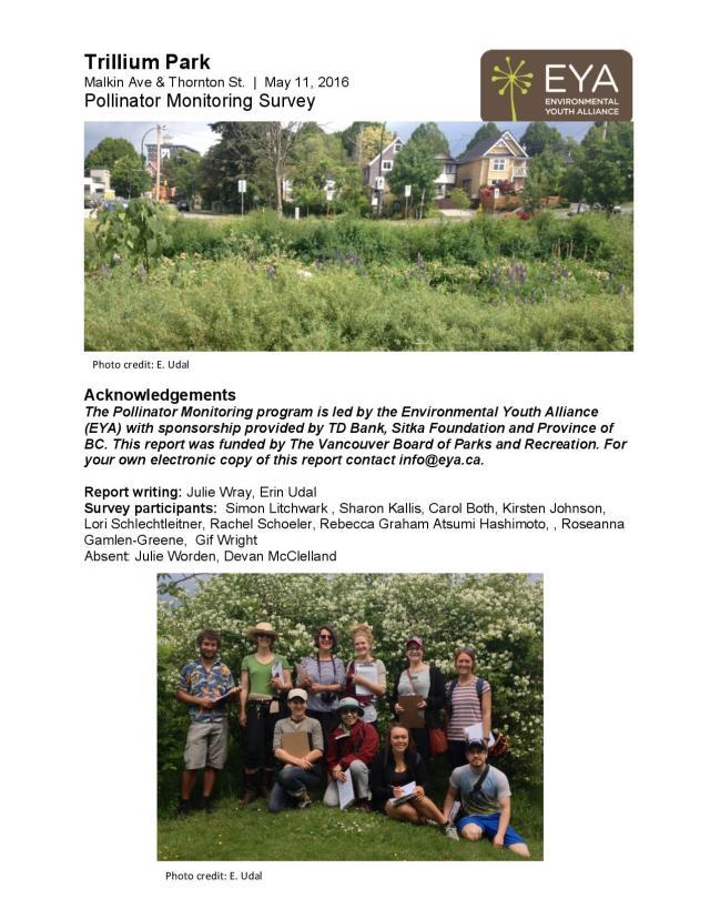 Trillium Park bee survey 16-page-001
