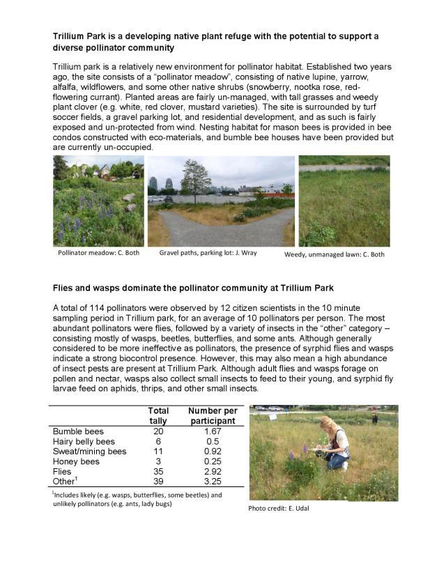 Trillium Park bee survey 16-page-002